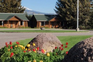 El Western Cabins and Lodges - since 1948 :: Authentic cabins & spacious lodges capture Old West spirit w/rustic luxury in a spectacular setting. Convenient to the Madison River, Virginia City & 70 miles to Yellowstone.