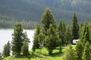 National Forest RV Sites - Book ONLINE